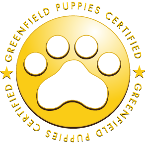 Greenfield Puppies Certified