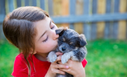 child kissing puppy