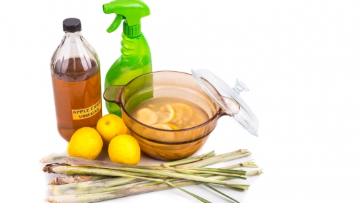 Safe Homemade Bug Spray, Skunk Spray, and Smell-Be-Gone Spray for Your Pet