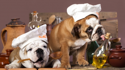 Safe Herbs and Spices for Dogs