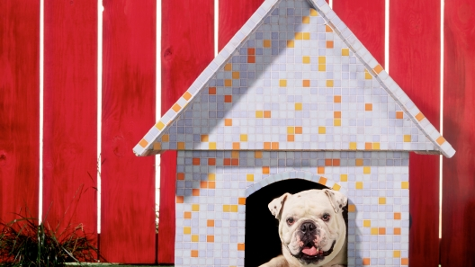 3 DIY Dog House Design Ideas